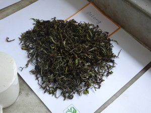 Thurbo Oolong Tea