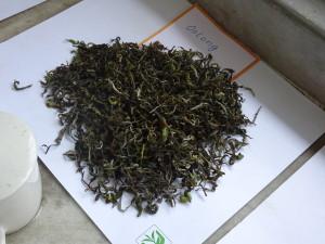 Thurbo Oolong Tea